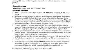 Standard Resume Sample Or Resume Objectives Examples Best