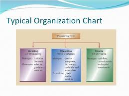 Typical Organizational Chart For Operations Management 11 Typical Organization Chart Operations Management