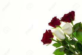 Hermosas Rosas En El Ramo Fondo Para Invitaciones Boda