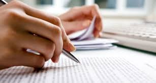 Why Training Report Is Essential? – The Ultimate Essay Writing ...