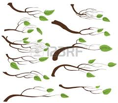 tree branch with leaves vector. tree branch and leaves set vector with