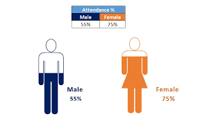 Male And Female Info Graphics In Excel Pk An Excel Expert