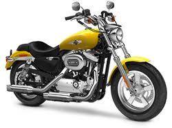 harley davidson motorcycles motorcyclist