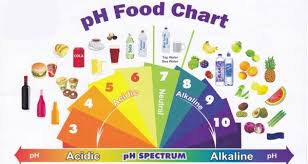 Ph Spectrum Food Chart Pin On Vn Health