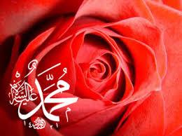 H.Z Muhammed'in hakemliği