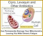 Prevent cipro side effects
