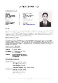 Beautiful Modelo De Curriculum Vitae Filetype Doc Pictures