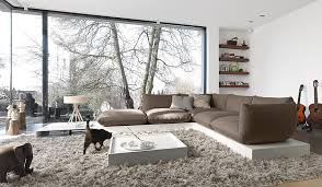 living room sofa ideas. living room ideas couch nature themes design with brown puffy sofa l shaped grey shag wool s