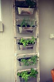 apartment herb garden. 45+ Best Indoor Herb Garden Ideas For Your Small Home And Apartment