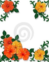 Small Picture Flower Page Borders Images Image Gallery HCPR
