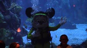 underwater restaurant disney world. Scuba Diving Mickey Mouse At Coral Reef Restaurant - EPCOT Walt Disney World YouTube Underwater E