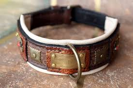 ingian custom made dog show collar with nameplate harakhan kennel