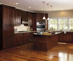 Dark Maple Kitchen Cabinets