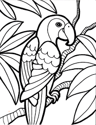 Small Picture Parrot Bird Coloring Page Kids Coloring Pages Pinterest