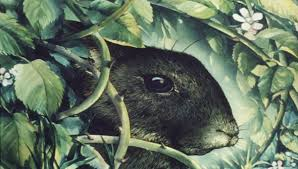 Image result for watership down 1978
