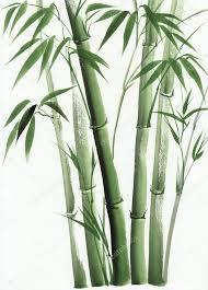 bamboo original watercolor painting asian style