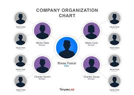 Best Way To Create Organizational Chart Org Chart Designer