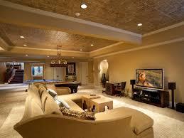 Build Basement Under Garden - Finished basement ceiling ideas