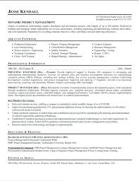Construction Assistant Project Manager Resume Project Executive Sample Resume Podarki Co