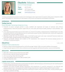 Resume Templets Gorgeous Photo Resume Templates Professional CV Formats Resumonk