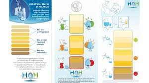 Urine Color Chart Hydration For Health