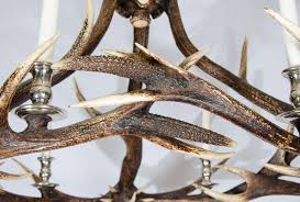antler chandelier with nickel plated finish