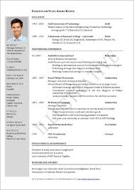 Resume Formats Pdf Professional Resume Formats 18708 Resume Cv Example Pdf Best 25 Job