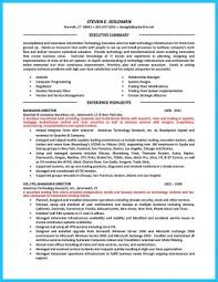 Cto Resume Templates Examples Fearsome Executive Summary Sample Doc