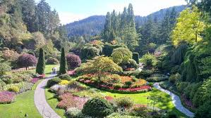 butchart gardens map. Simple Butchart In Butchart Gardens Map O