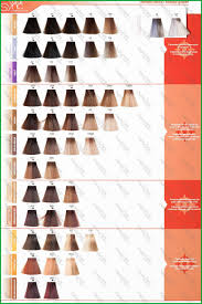 Matrix Red Colour Chart Matrix Hair Color Chart Book Matrix Hair Color Swatch Book