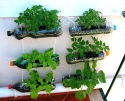 vegetables decoration ideas home garden ideas nice home garden decor ideas the best ideas for garden
