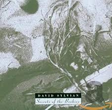 <b>SYLVIAN</b>, <b>DAVID</b> - <b>Secrets</b> of the Beehive - Amazon.com Music