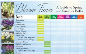 Bloom Times Guide To Spring And Summer Bulbs Longfield