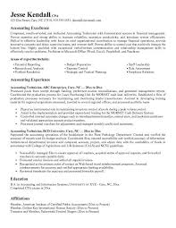 Example Accounting Technician Resume Free Sample