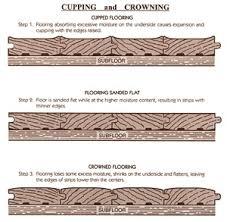 water damaged wood diagram