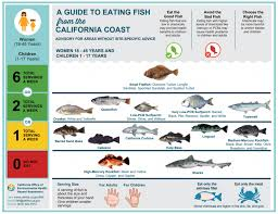 High Mercury Fish Chart Safe To Eat Fish From The San Francisco Bay San Mateo