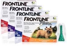 Save Money By Splitting Doses Of Frontline Plus Flea