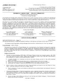 Great Examples Of Resumes Amazing Business Resume Example Sample