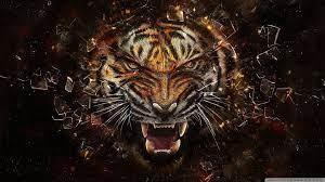 Free download Roaring tiger ultra HD 4k ...