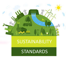 Image result for china sustainability