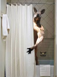 badass shower curtains. This Shower Is Occupied Badass Curtains