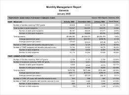 Monthly Report Template Word Monthly Management Report Template 100 Free Word Excel Documents 3