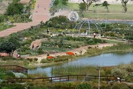 biodiversity garden green point park