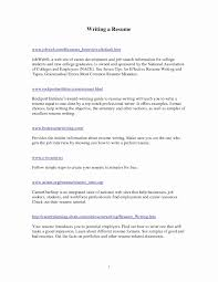 Writing A Will Free Template Elegant Lovely Simple Business Plan ...