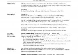 Teaching Resume Sample Unique Skills For Early Childhood Education ...