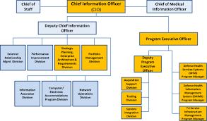 Organization Of Office Of Mhs Cio Download Scientific Diagram