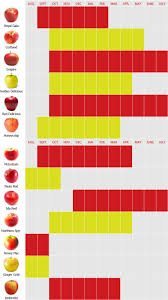 Apple Texture Chart Availability Chart Bay Growers