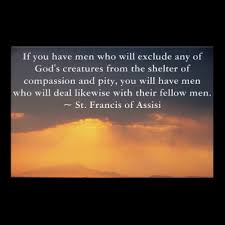 St Francis Quotes Mesmerizing Quotes About St Francis Of Assisi 48 Quotes