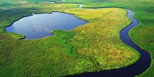 Image result for tourism in botswana