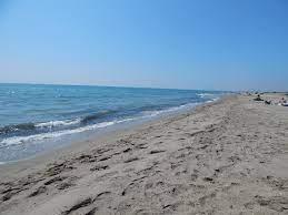 Primo cancello Paradise Beach Ostia - Ristorante Bar stabilimento - Voglia  di ☀️, 🌊 e 🐟 freschissimo? Venite al Primo cancello Paradise beach di  Ostia !! Per info e prenotazioni chiamateci al
